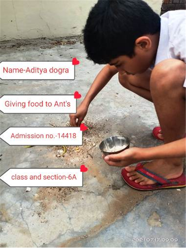 Good Deeds by Class 6 Students.